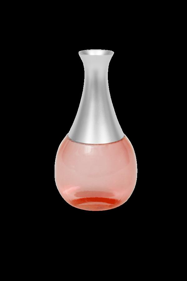 Gesinimo vaza